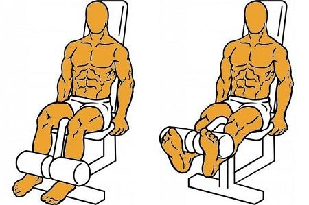 extension de piernas ejercicios desaconsejados