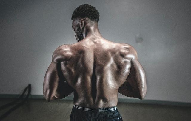 como aumentar o ganar la masa muscular